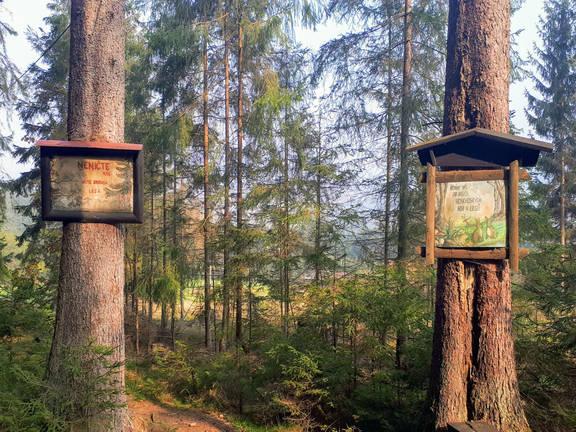 Obrázková cesta Samčanka - Javořina